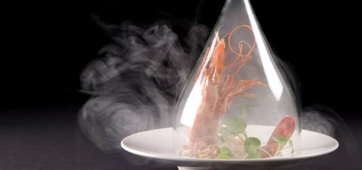 Conoce las 7 técnicas más comunes de la gastronomía molecular