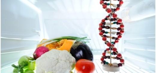 que-es-cocina-molecular