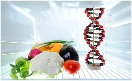 Qu es la cocina molecular for Quien invento la cocina molecular