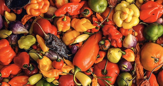 Ingredientes esenciales de la gastronomía peruana – parte 2